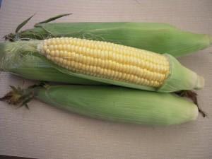 corn-multiple