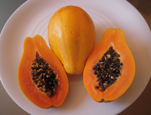 papaya-blog