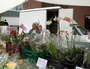 santa_monica_market