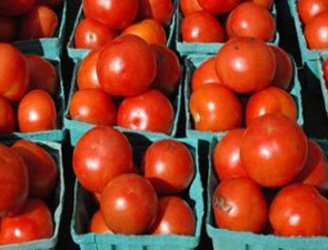 tomatoes_295x225
