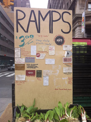 ramps_295x295