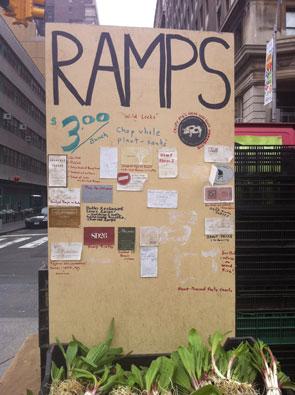 ramps_295x295
