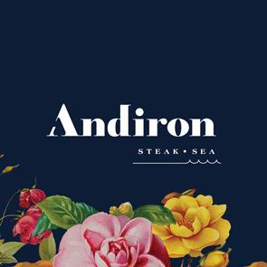 andiron-logo_sized